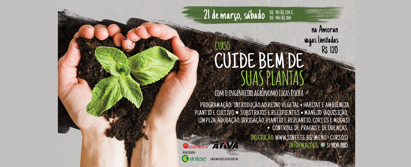 Cuide Bem de Suas Plantas